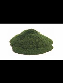Pudra chlorella bio vrac