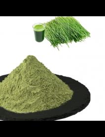 Pudra iarba de grau verde vrac