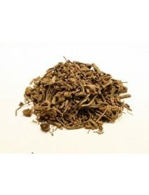 Valeriana planta uscata vrac